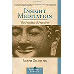 Insight Meditation: The Practice of Freedom by Joseph Goldstein